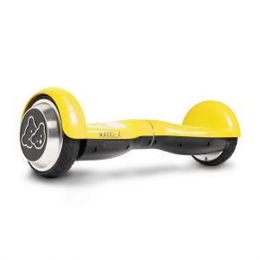 Riedis Scooter 45G