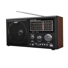 Radijo imtuvas Rising RS-8000